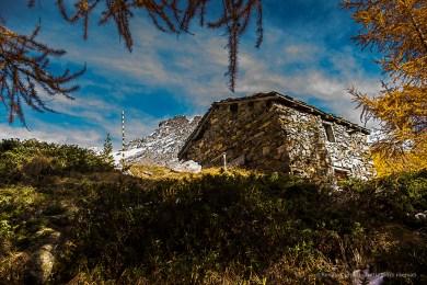 Alpe Campascio. Nikon D810, 24mm (24 mm ƒ/1.4) 1/80 sec ƒ/4 ISO 64