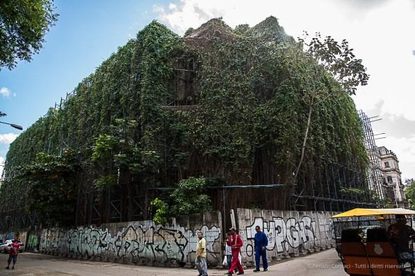 """Slow renovation, Habana Vieja. Nikon D810, 24 mm (24-120.0 ƒ/4) 1/500"""" ƒ/7.1 ISO 800."""