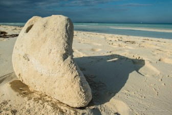"An impromptu sand sculpture on the Las Gaviotas beach, on Cayo Santa Maria. Nikon D810, 24 mm (24.0 ƒ/1.4) 1/125"" ƒ/10 ISO 64"