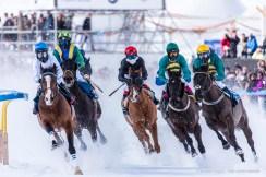 White Turf St Moritz. February 2018. Nikon D750 600 mm (Sigma 150-600 ƒ/5-6.3) 1/1250 ƒ/6.3 ISO 900