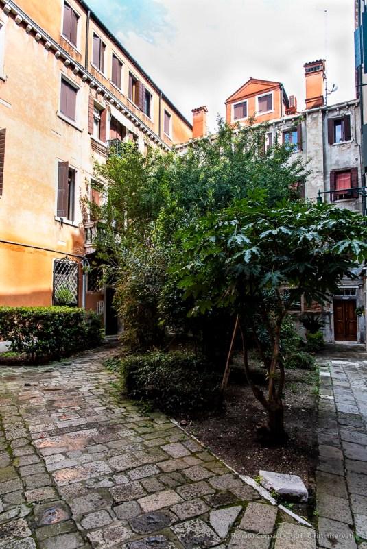 "A courtyard in Cannaregio. Venice, September 2018. Nikon D810, 24 mm (24-120 mm ƒ/4) 1/200"" ƒ/8 ISO 640"