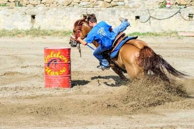 Barrel Racing - Golden Horse