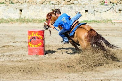 Barrel Racing - Golden Horse