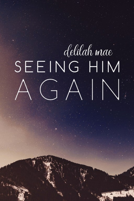 Seeing Him Again by Delilah Mae | Cover Design by Render Compose