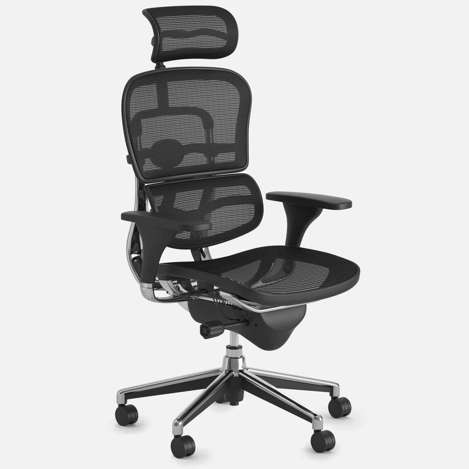 Ergohuman High Back Swivel Chair 3d Model