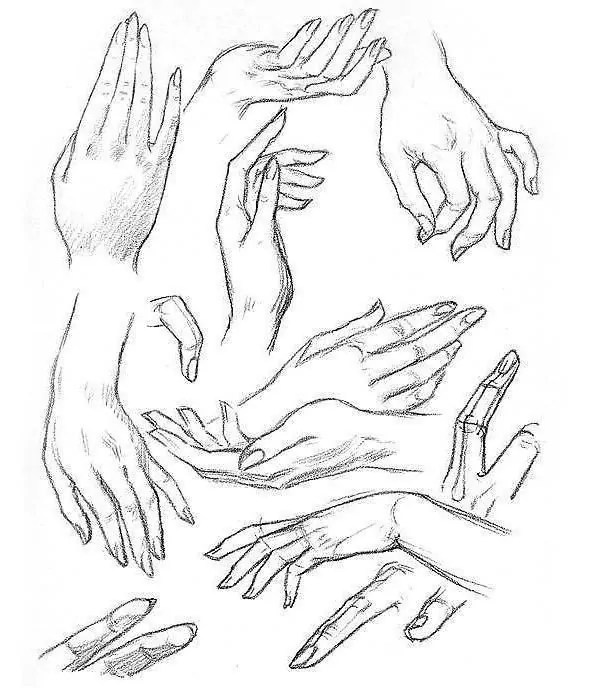 референс рук