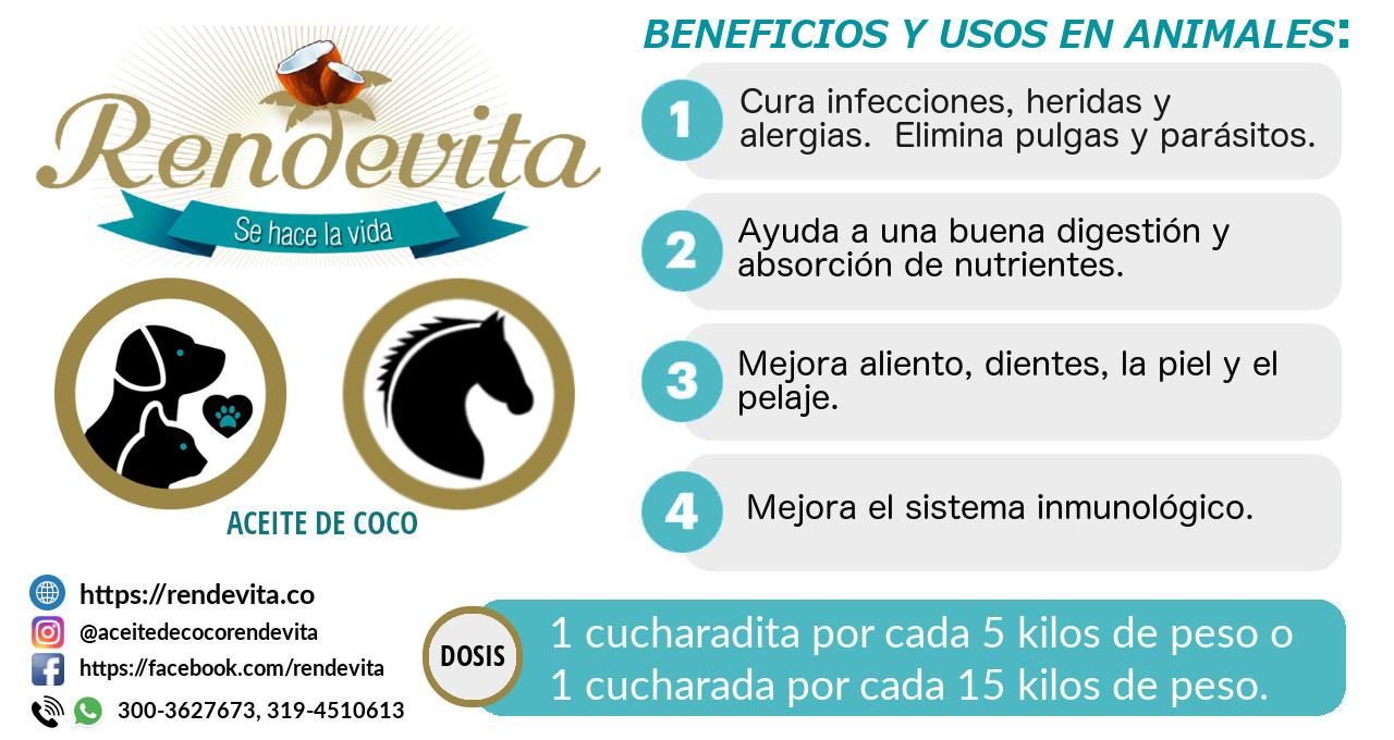 Beneficios del aceite de coco en animales