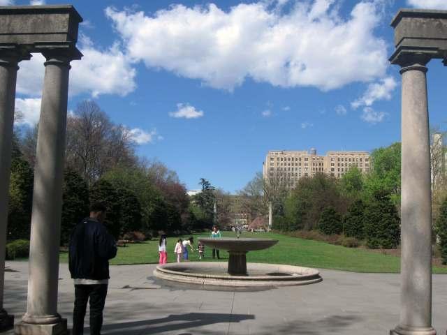 Osborne Garden at the Brooklyn Botanic Garden