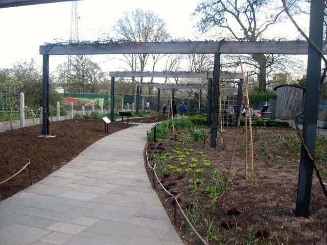 Herb garden at the Brooklyn Botanic Garden