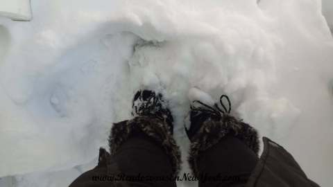 From Where I Stand There's Hip-Deep Snow