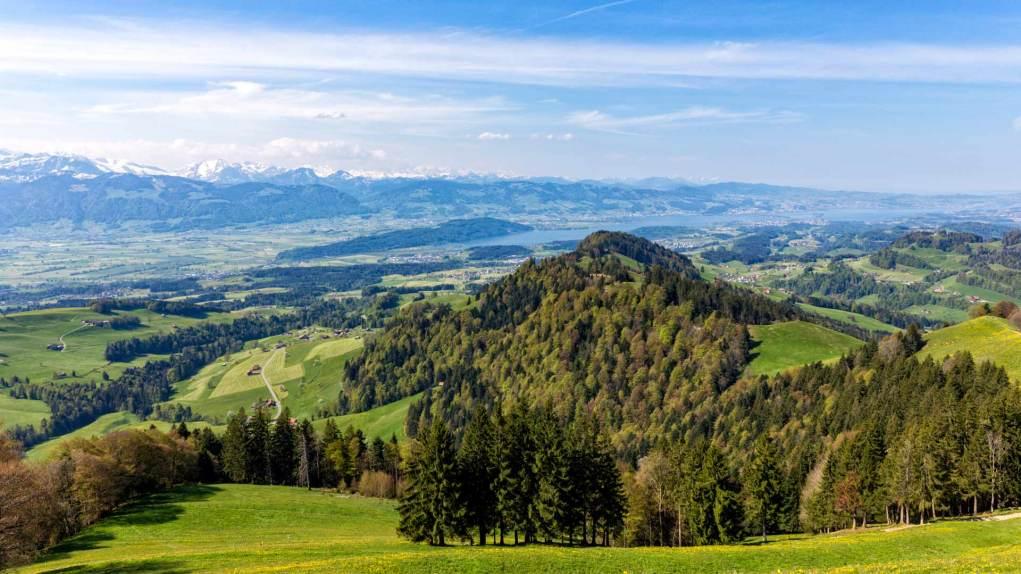 Blick auf den Ober- und Zürichsee