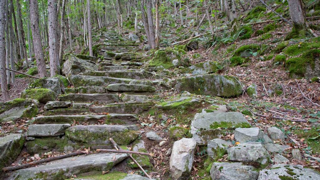 Steinplattenweg