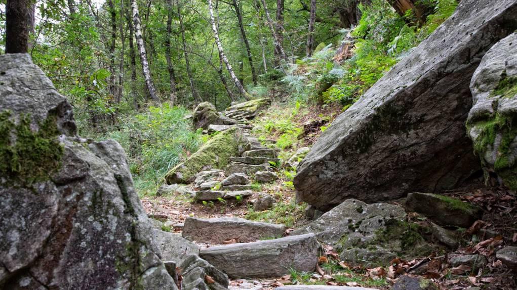 Urchige Steinplatten