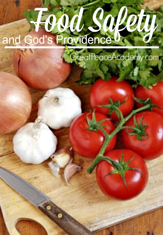 Food Safety and God's Providence, Plastic or Wood, Which is Safer?   Great Peace Academy