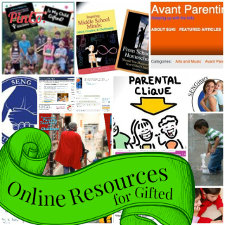 Favorited Pinterest Boards for Homeschooling Gifted Learners