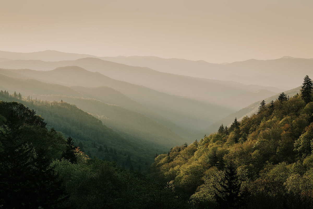 Great-Smoky-Mountains-Renee-Roaming