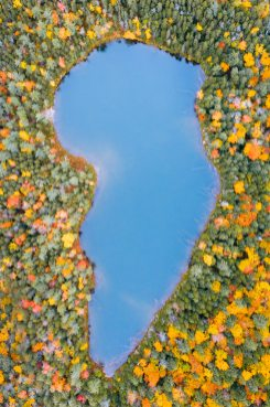 New England Fall Road Trip Ultimate Itinerary Renee Roaming Falls Pond White Mountains New Hampshire