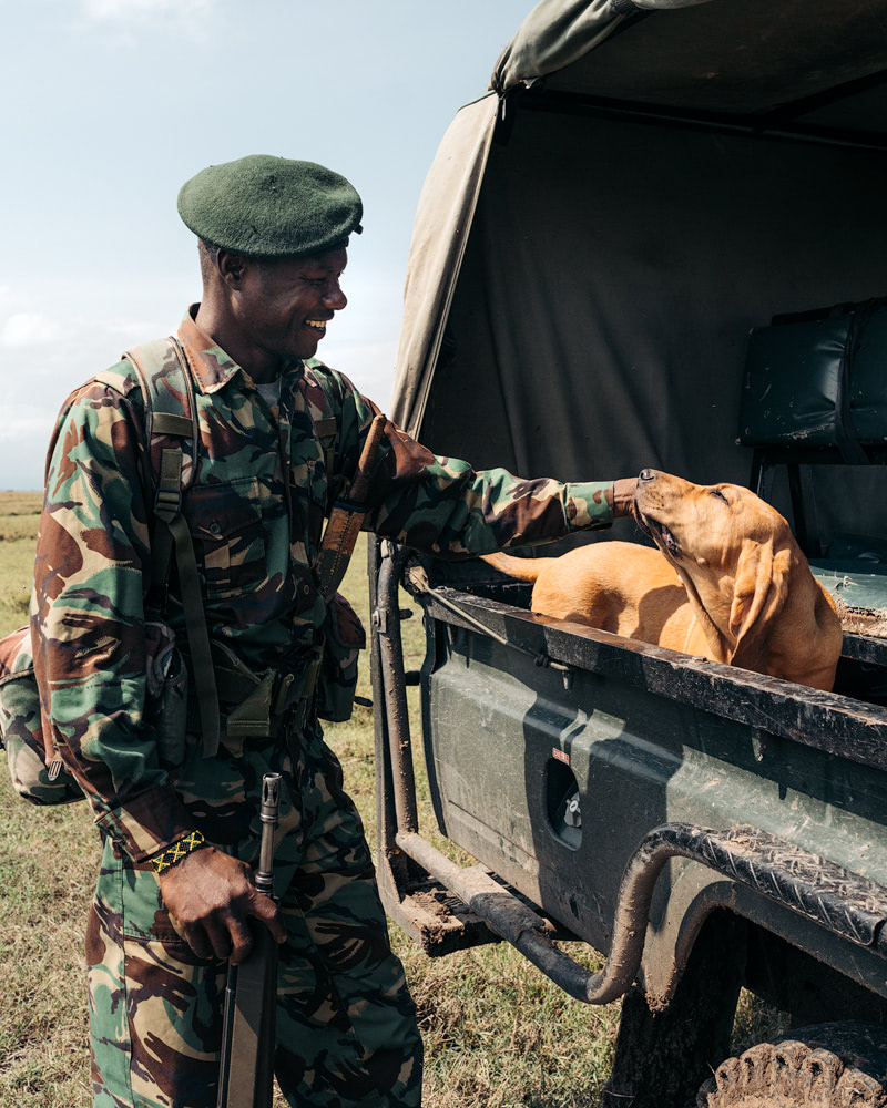 Ultimate Safari Adventure at Ol Pejeta Conservancy Kenya K9 Blood Hound Unit 5