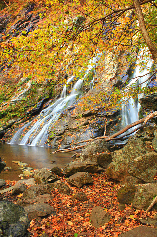 12 Best National Parks To Visit In The Fall - Shenandoah National Park Waterfall