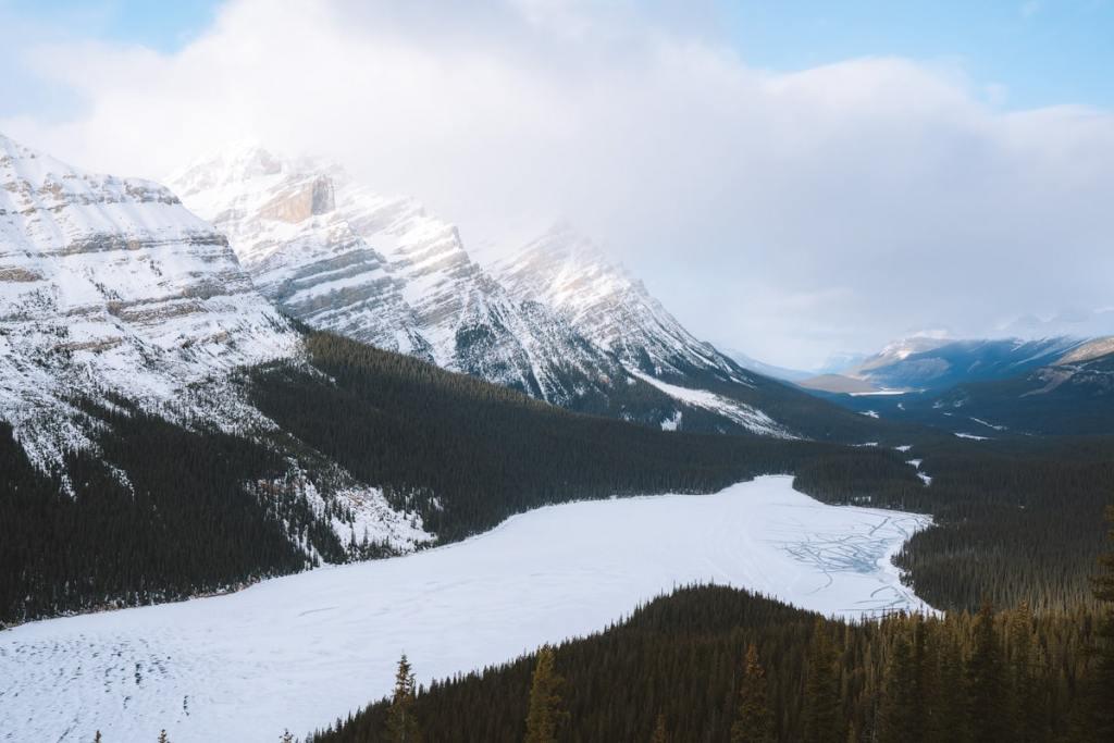 Banff Peyto Lake