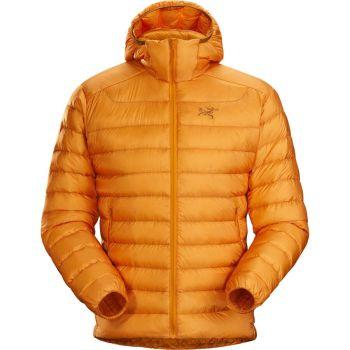 Arc'teryx Cerium LT Hooded Down Jacket