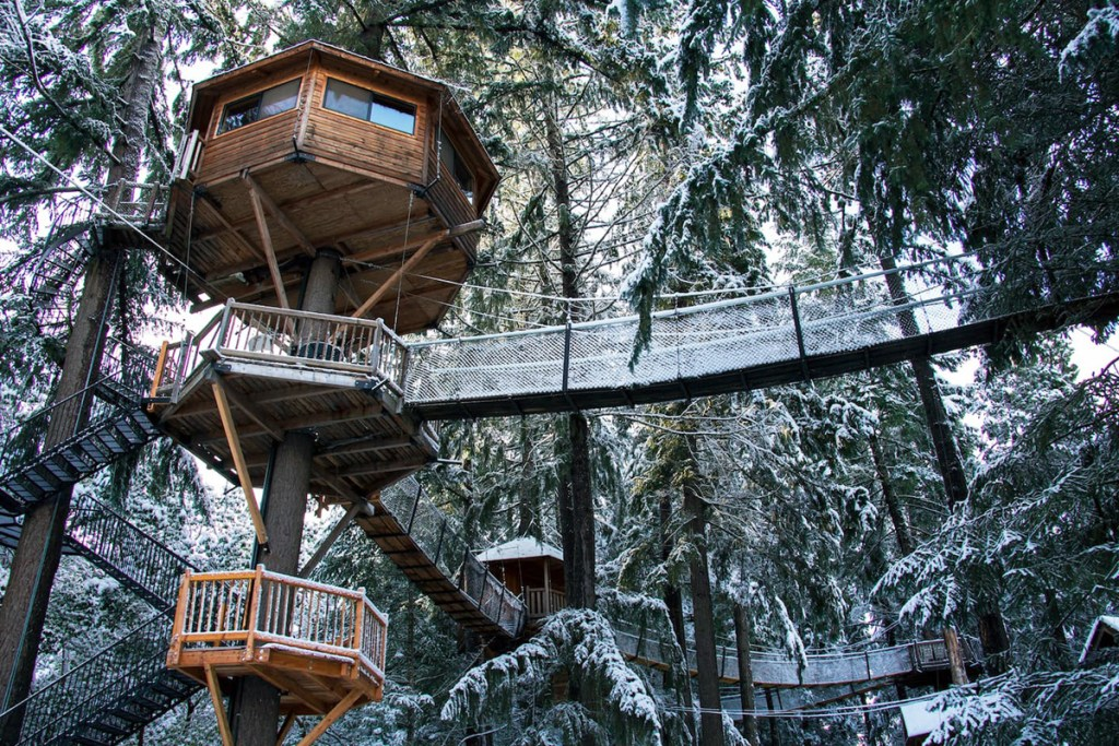 Magical Oregon Treehouses You Can Rent - Majestree Oregon Treehouse