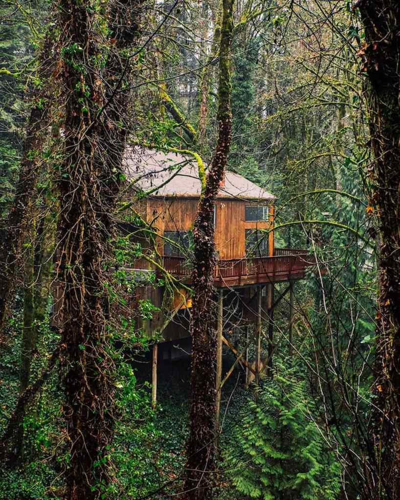 Portland Oregon Cabins to Rent - Wald House PDX