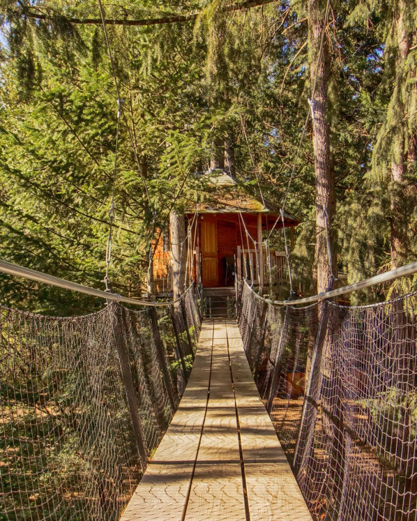 Treehouses You Can Rent In Oregon - Pleasantree Oregon Treehouse