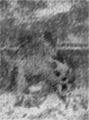 gebirgehund