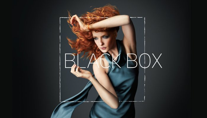 Black Box Cancelled After One Season By ABC