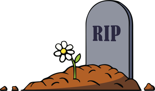 rip cancelled tv shows