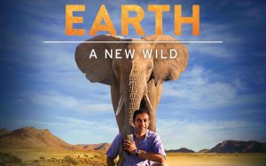Earth: A New Wild Cancelled Or Renewed For Season 2?