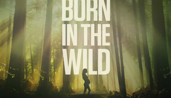 Born in the Wild Cancelled Or Renewed For Season 2?