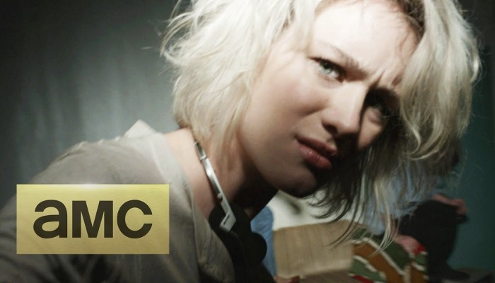 Is There Halt and Catch Fire Season 3? Cancelled Or Renewed?