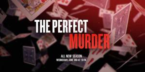 The Perfect Murder Cancelled Or Renewed For Season 3?