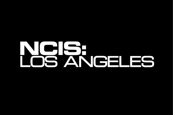 Is There NCIS: Los Angeles Season 8? Cancelled Or Renewed?