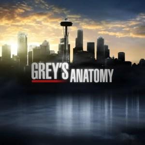 Grey's Anatomy Season 13 Cancelled Or Renewed?