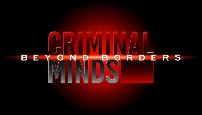 Criminal Minds: Beyond Borders Cancelled Or Renewed For Season 2?