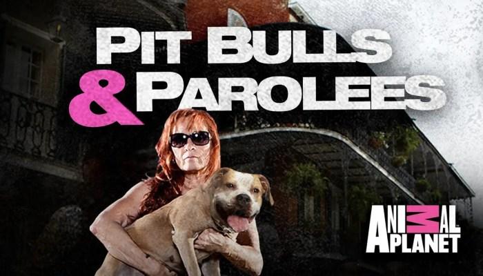 Pit Bulls & Parolees Renewed For Season 15