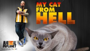 My Cat From Hell cancelled or renewed