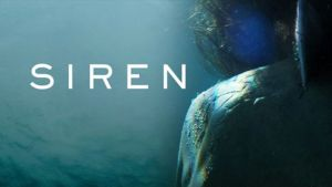 Siren Freeform TV Show Status