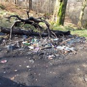 Torched wheelie bins and damage to woodland walk found in Bluebell Woods after reports of Anti Social Behaviour