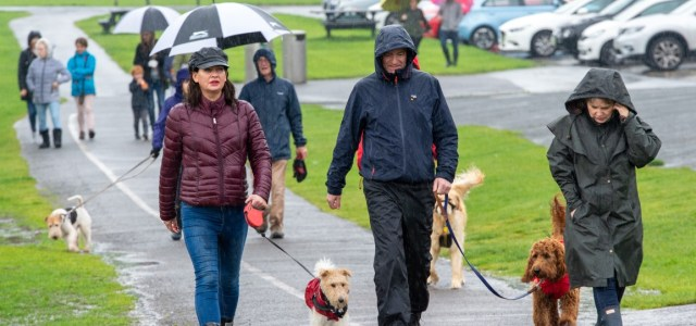 Have your say on a potential Renfrewshire Voluntary Dog Walkers scheme