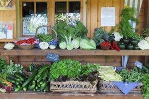 Open Eco Dag @ De Ommuurde Tuin | Renkum | Gelderland | Nederland