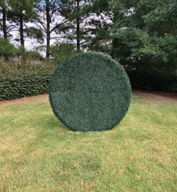 Shrub Grass Wall Round 6ft
