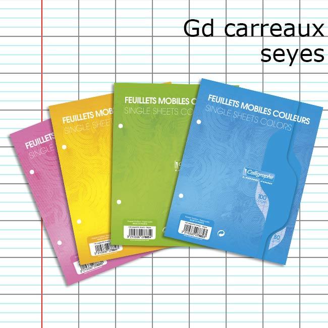 100 pages feuillets mobiles calligraphe 17x22 couleur au choix