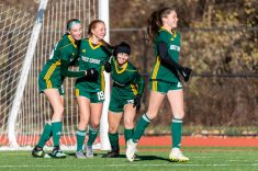 WATERBURY, CT. 16 November 2019-111619BS467 - Holy Cross' Juliana Dane (19), celebrates her scoring of a goal with teammates, to her left, Alyssa Hebb (16), and to her right, Jenna Debiase (15), during a Class S quarterfinal match between Coventry and Holy Cross at Crosby High School in Waterbury on Saturday. Holy Cross beat Coventry 3-0 and advances to the Class S semi-finals next week. Bill Shettle Republican-American