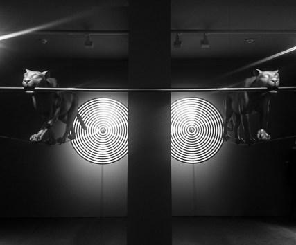 Gao Lei - Room-16 (installation d'art contemporain)