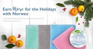 earn-more-for-holidays-with-Norwex