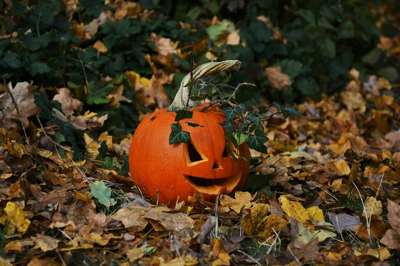 An image of a jack o lantern on a forest floor